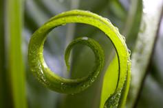 energetische Ganzheitsheilung, Heilungstherapie, Reiki Behandlung