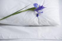 Therapie Schlafproblem, Schlafstörung beheben, Online Therapie Schlafrhythmus